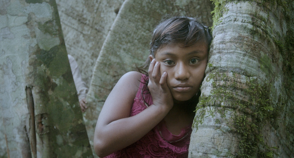 still from Yollotl a film by Fernando Colin Roque